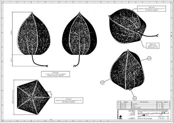 190 alchechengio interno 3 fish form studio di design e progettazione verona