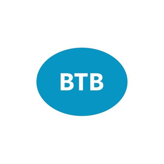 205 BTB TRANSFER MARCHIO IMMAGINE COORDINATA 2